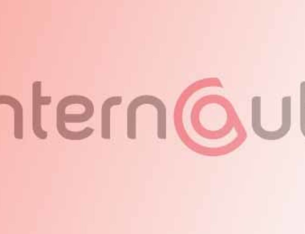 MÉDIAS : avril 2017 – L'INTERNAUTE – Vol électronique : comment se protéger et se défendre ?
