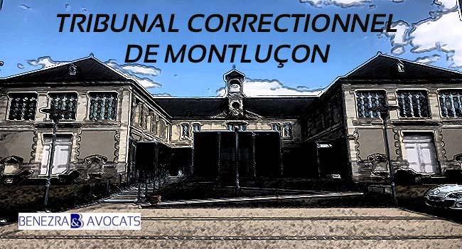 avocat homicide, tribunal correctionnel de montluçon, jugement homicide montluçon
